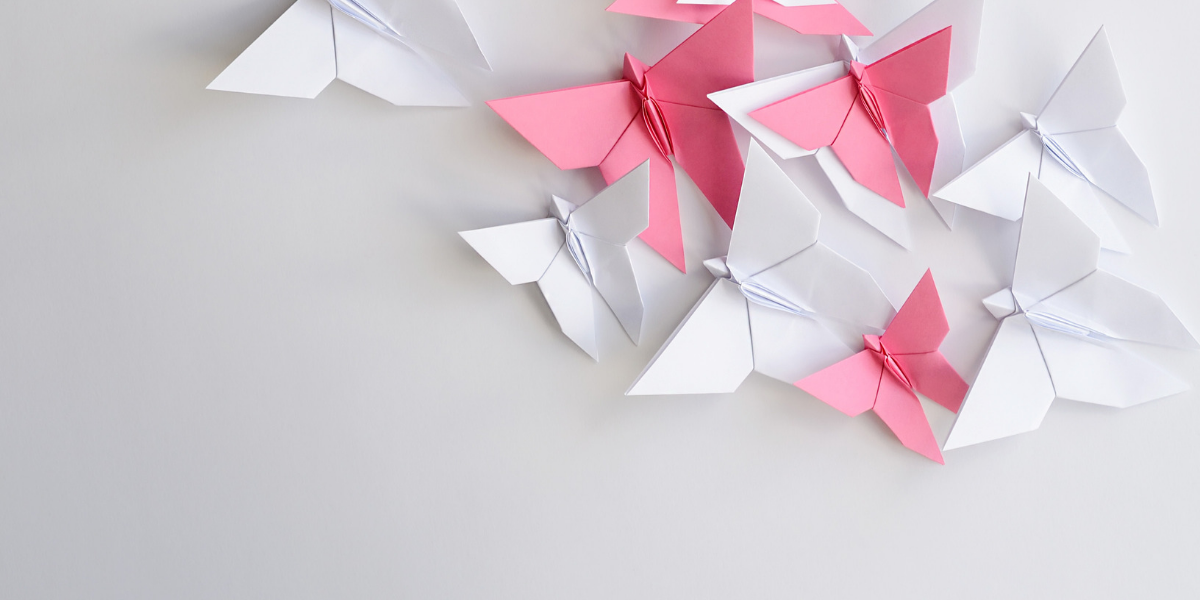 A Moment of Sharing – What an origami swan challenge taugh us about motivation to learn